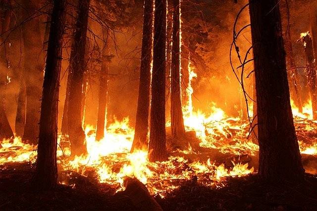 Wildfires bring Huge Power Outrage in California on Thursday